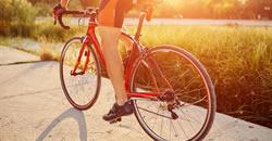 <h6>Bicicleta</h6>